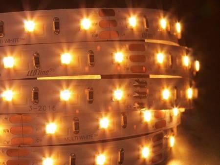 Taśma LED line CCT 300 SMD 3528 12V MULTIWHITE 3000-6000K 5 metrów